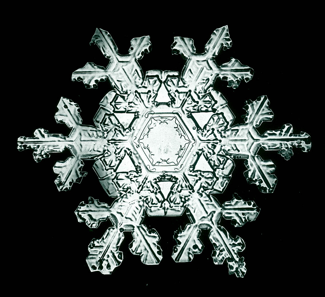 Wilson A Snowflake bentley pictures of snow