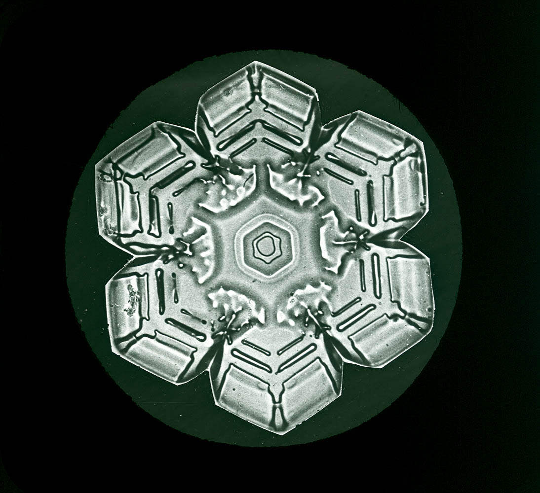 Photomicrograph of a snowflake